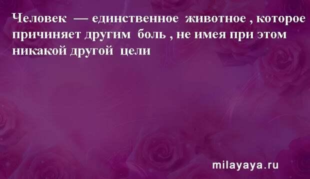 Картинки со статусами. Подборка milayaya-status-milayaya-status-30231112102020-12 картинка milayaya-status-30231112102020-12