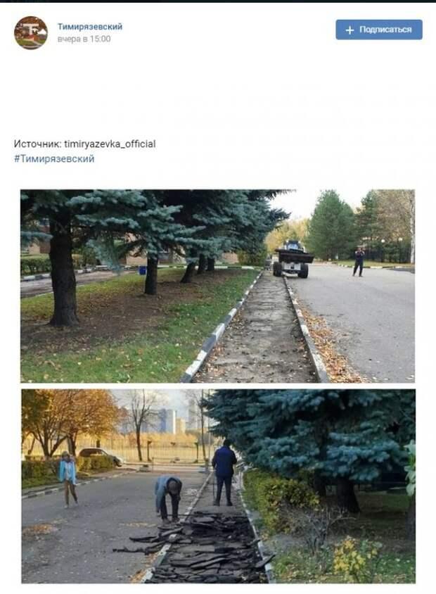 Фото дня: благоустройство кампуса Тимирязевской академии