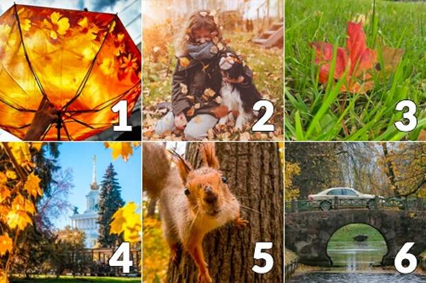 Картинка - тест: что ждет вас в октябре?