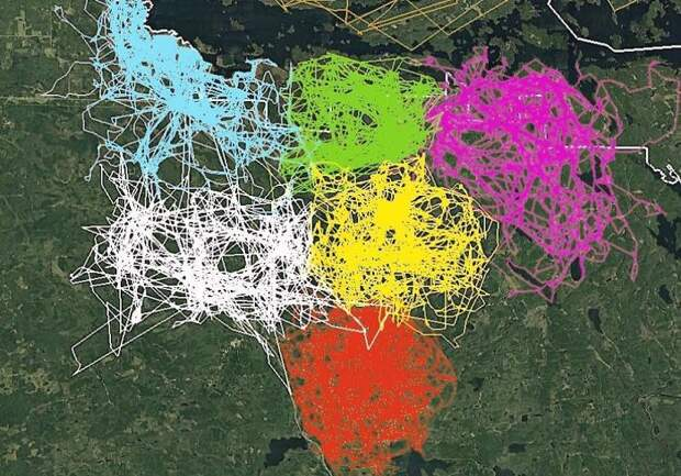 Несколько карт