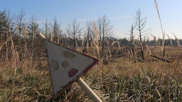 В Чернобыльской зоне задержали двоих россиян