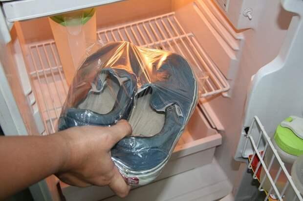 10 вариантов нестандартного использования морозилки, которые решат много бытовых проблем