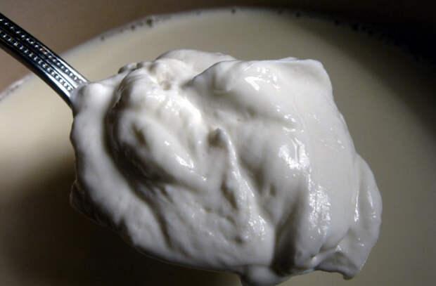 Кастрюля домашнего йогурта: делаем из молока и 2 ложек закваски