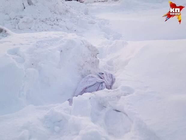 Вот в таком мешке хозяева выбросили бульдога в снег. Они утверждают, что пес умер, но почему, в таком случае, нельзя было похоронить его? Фото: Вероника Галкина