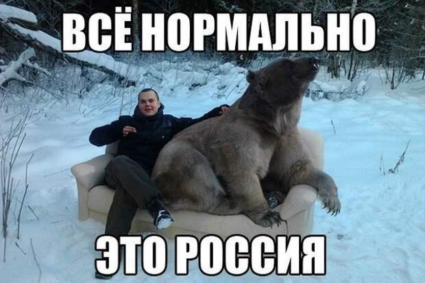 1479315375_fotomemy-15
