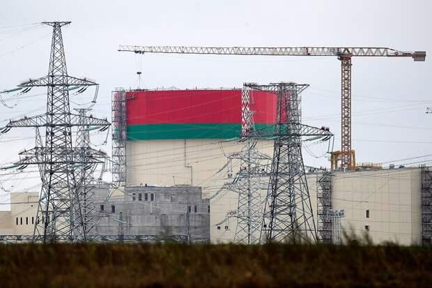 Свержение Лукашенко – возможность для Литвы закрыть Белорусскую АЭС