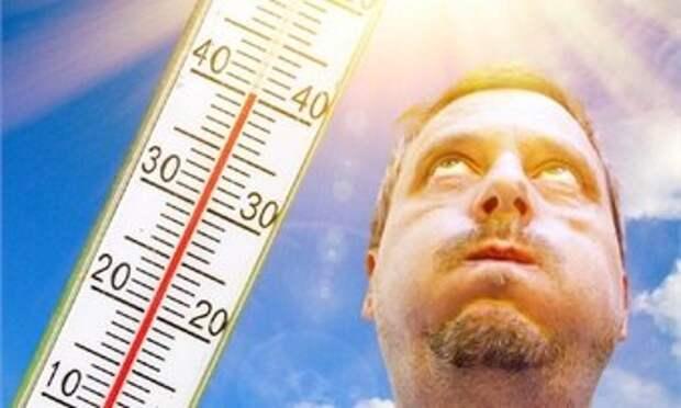 Климатолог предупредил россиян о смертельных волнах жары