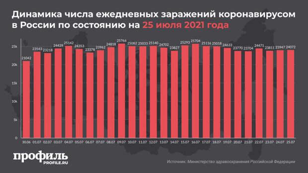 За сутки в России выявили 24072 новых случая COVID-19