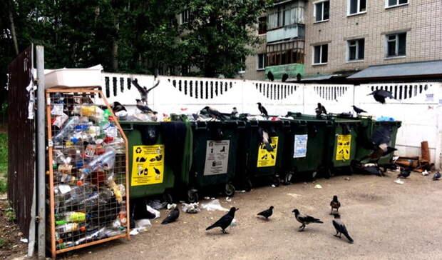 Более 600 мусорных площадок в Оренбурге признаны судом собственностью мэрии