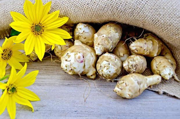 Еда долгожителей: лучшие рецепты блюд из топинамбура