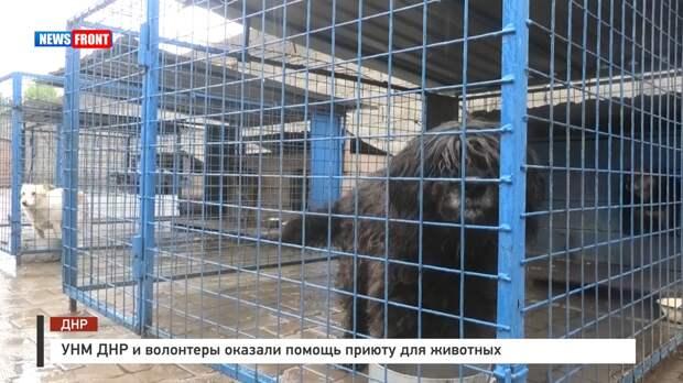 УНМ ДНР и волонтеры оказали помощь приюту для животных