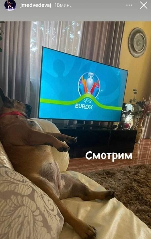 Медведева показала, как будет смотреть ссобакой матч Финляндия— Россия