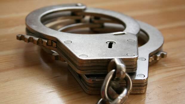 Задержанного в Москве Меркушкина везут в Саранск