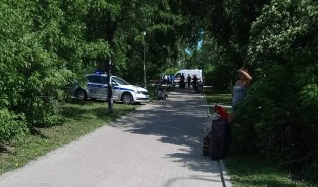 Полиция застрелила мужчину, напавшего напрохожих сножом впарке иубившего троих