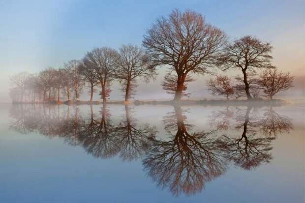 Победители фотоконкурса Siena International Photography Awards 2016 в категории «Красота природы»