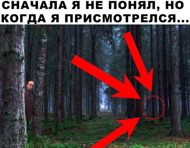 фотожабы с красным кругом