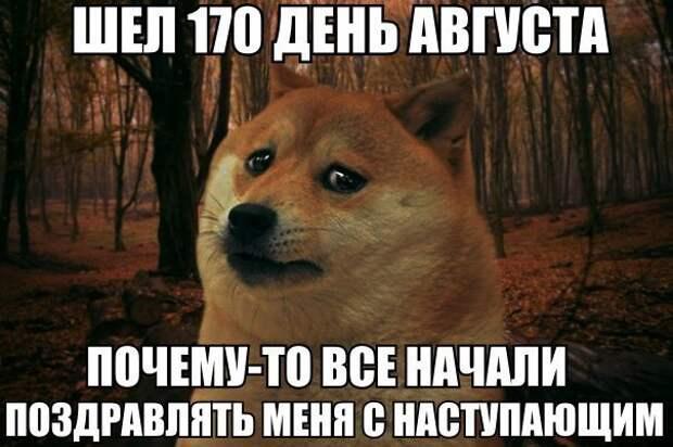 _JIIF7xvN6Y