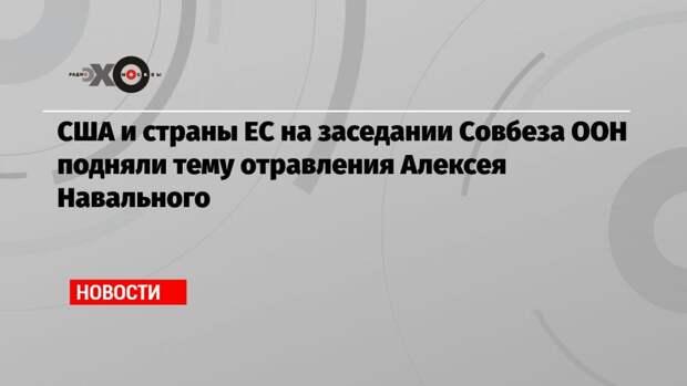 США и страны ЕС на заседании Совбеза ООН подняли тему отравления Алексея Навального