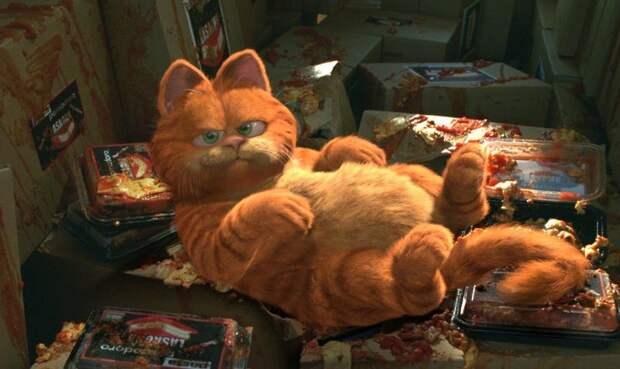 10 лучших экранных котов и кошек