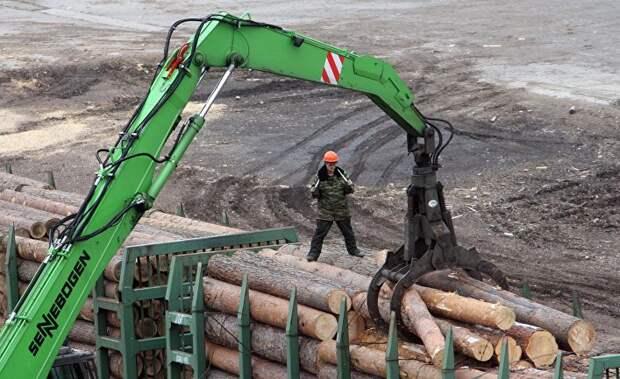 Kauppalehti (Финляндия): директор финской деревообрабатывающей компании нашел рецепт успеха в России