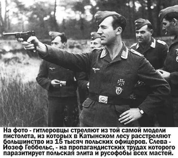 Поляков в Катынском лесу расстреляли немцы