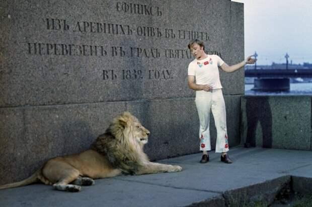 Первым из актеров ко льву не побоялся подойти Андрей Миронов.