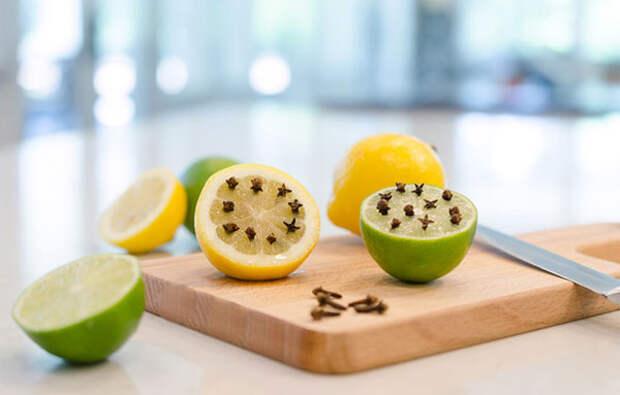 http://vredinfo.ru/wp-content/uploads/2016/11/limon-i-gvozdika-ot-komarov1.jpg