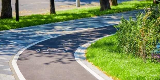 Собянин рассказал о благоустройстве пешеходных и зеленых зон в районах ЮАО