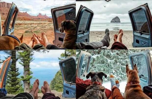 Свежие фото приколы и смешные картинки для поднятия настроения (12 фото)