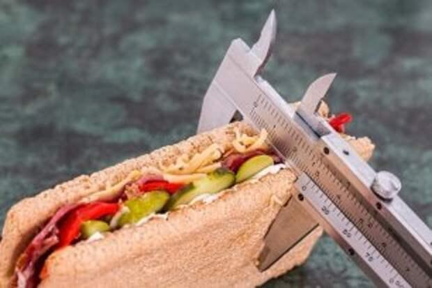 На Вологодчине с детского сада будут бороться с ожирением