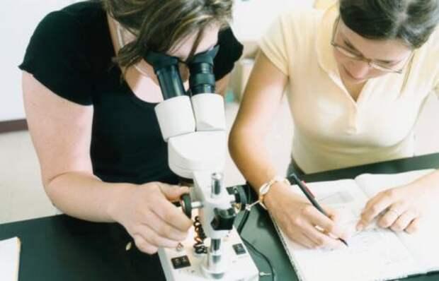 Применение микроскопов в археологии.