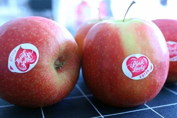 Перед употреблением яблок можете не снимать наклейки. / Фото: tampereclub.ru