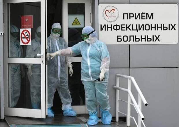Вирусолог объяснил, для кого и чем опасна «черная плесень»