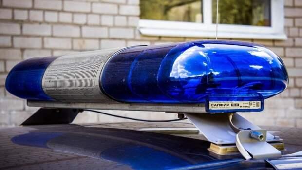 Расчлененное женское тело нашли в лесу Кузбасса