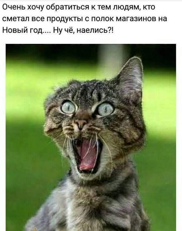 — Скажите, Вы случайно не сын старика Рабиновича?...