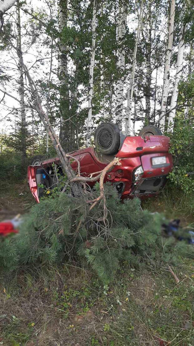 Трехлетний мальчик погиб в аварии на дороге «Ижевск-Воткинск»