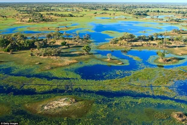 Сафари-туры от Wilderness Safaris в Ботсване