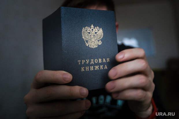 Мэр Владивостока уволился после совета вице-премьера Трутнева