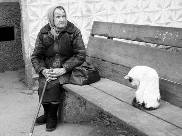 Власти РФ хотят создать новую систему домашнего ухода за стариками и инвалидами
