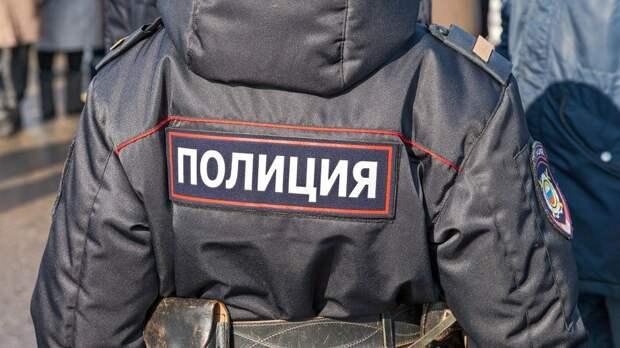 Четверо мужчин избили полицейских в Новой Москве