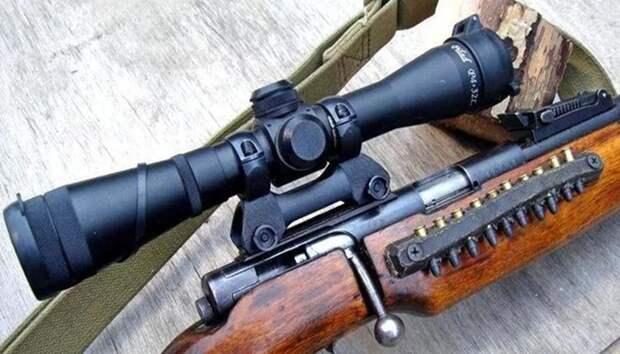 ТОП 7 лучших мелкокалиберных винтовок для охоты