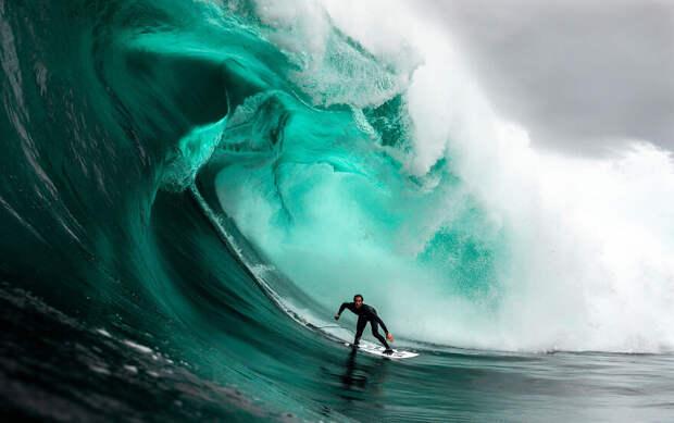 Лучшие фотографии океана и его обитателей 2020