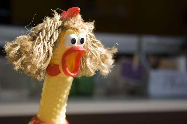 Супруги из Израиля делят замороженную курицу в суде