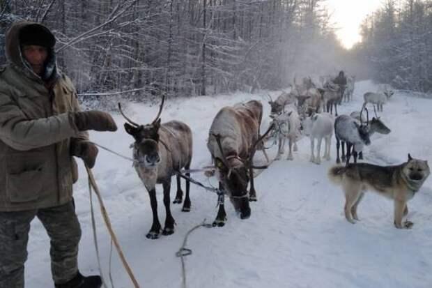 Правительство Магаданской области обратилось в ФАДН с инициативой внесения дополнений наименований коренных малочисленных народов