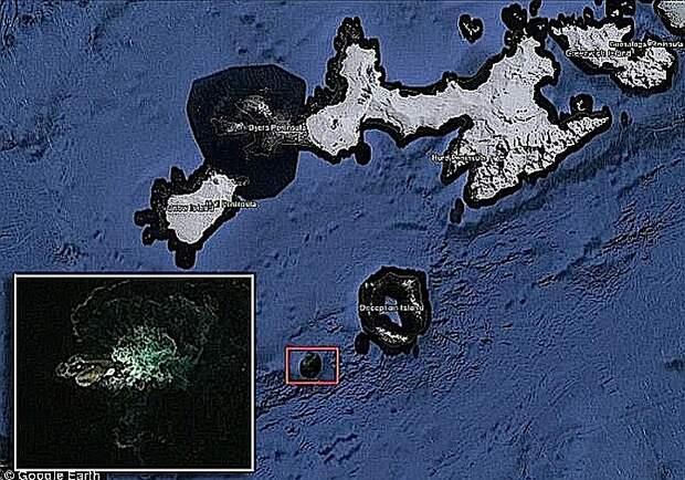 Кракены – кальмары чудовищных размеров – существуют не только в мифах