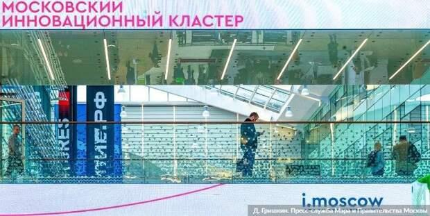 В Москве заработал новый онлайн-сервис для бизнеса — Сергунина. Фото Д. Гришкин. mos.ru