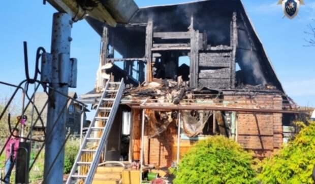Ужасная трагедия: пенсионерка сребенком погибли при пожаре вНижегородской области