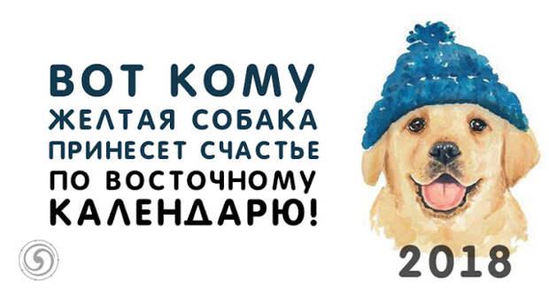 Вот кому Желтая Собака принесет счастье по восточному календарю