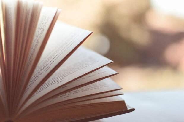 Книга/ Фото pixabay.com