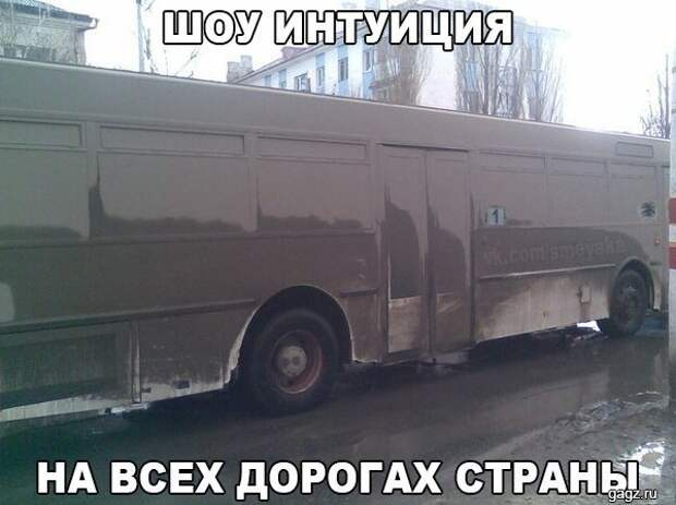 1445587202_avtoprikly-26
